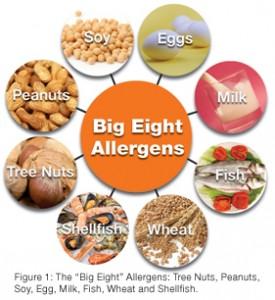 Best Food Allergy Tests Autism Mrt
